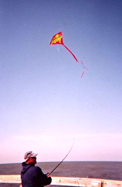 Kite flying high.. up up and away