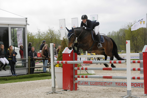 Paardensport springconcours