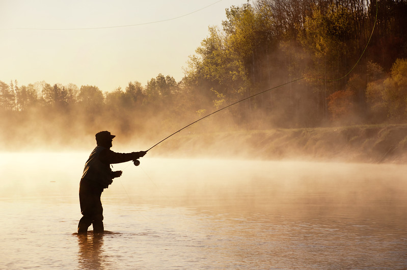 Fly fishing for Striped Bass on the Stewiacke River, Nova Scotia