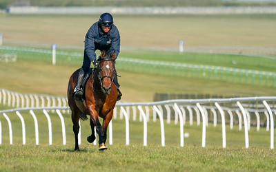 Guineas Breeze Up Practice Day-6