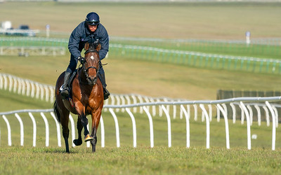 Guineas Breeze Up Practice Day-4