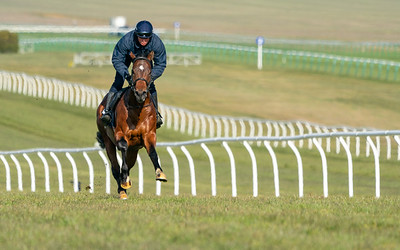 Guineas Breeze Up Practice Day-3