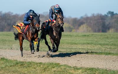 Gallops 17th April-34