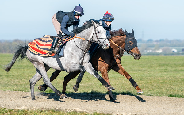 Gallops 17th April-41