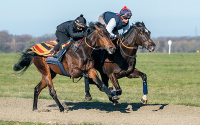 Gallops 17th April-22