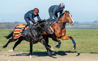 Gallops 17th April-27