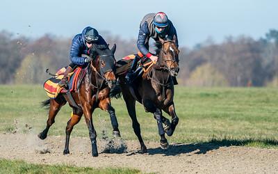 Gallops 17th April-35