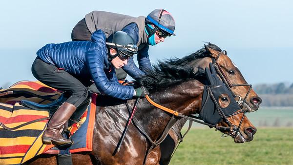 Gallops 17th April-40