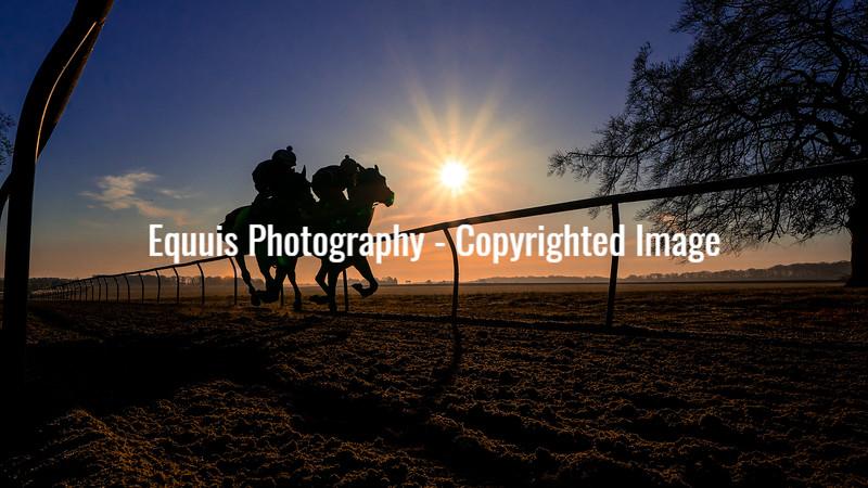 Gallops 17th April-20