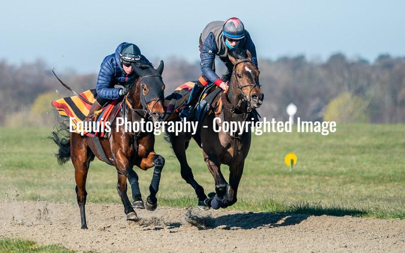 Gallops 17th April-36