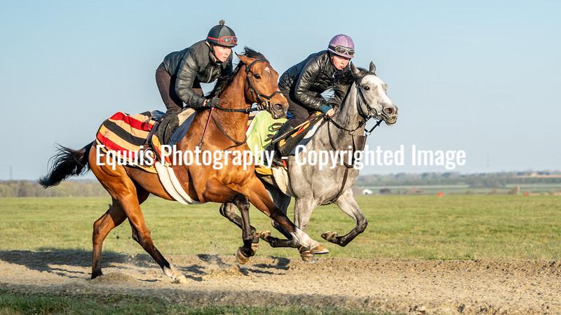 Gallops 24th April-7