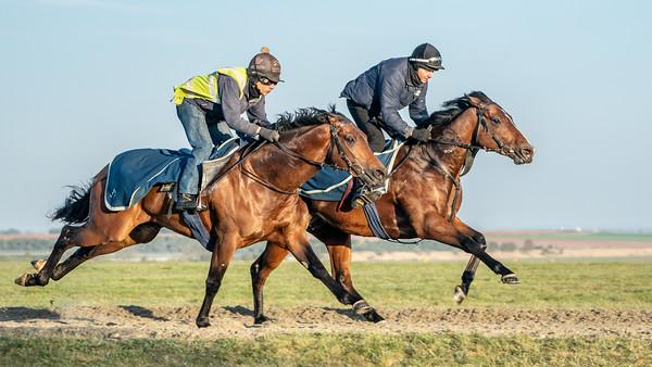 Gallops 24th April-12