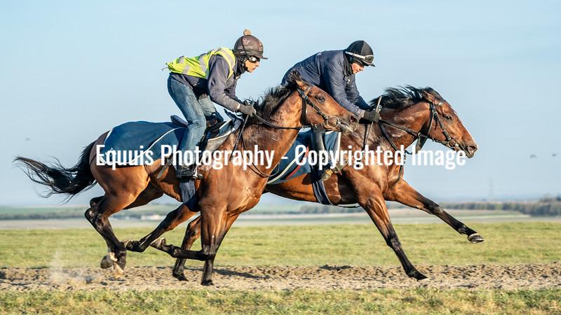 Gallops 24th April-14