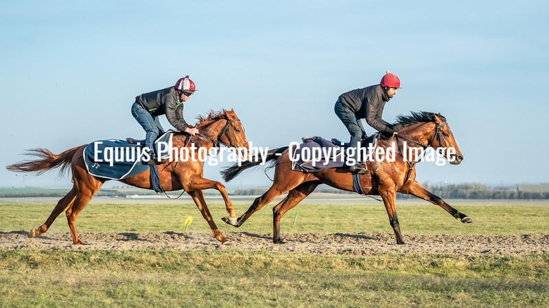 Gallops 24th April-21