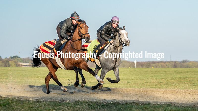 Gallops 24th April-6