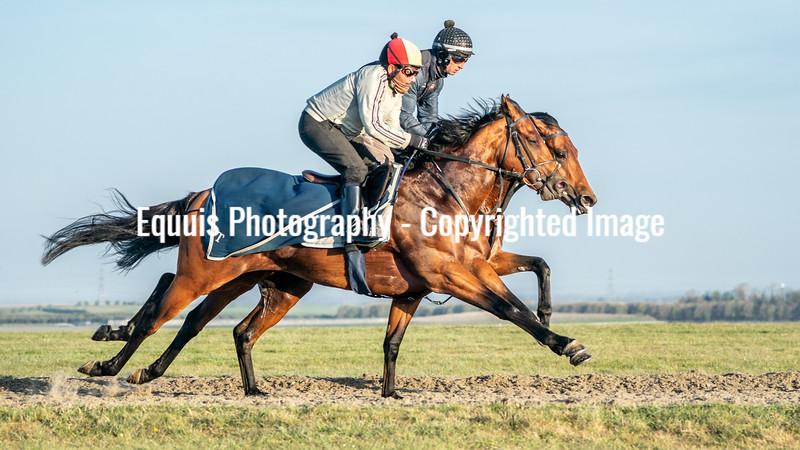 Gallops 24th April-15