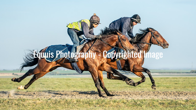 Gallops 24th April-13