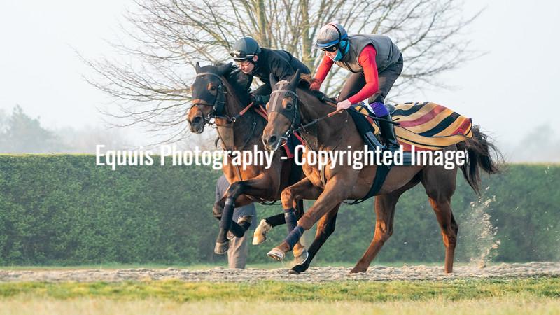 Gallops 21st April-16