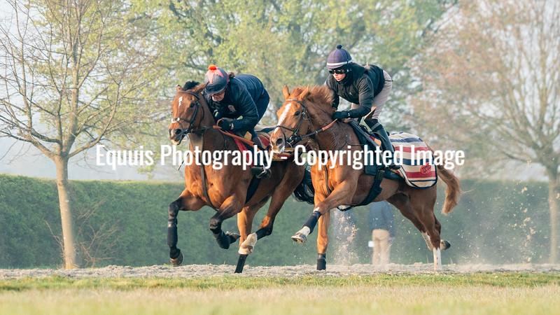 Gallops 21st April-5