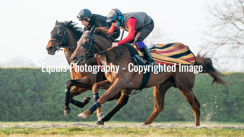 Gallops 21st April-18