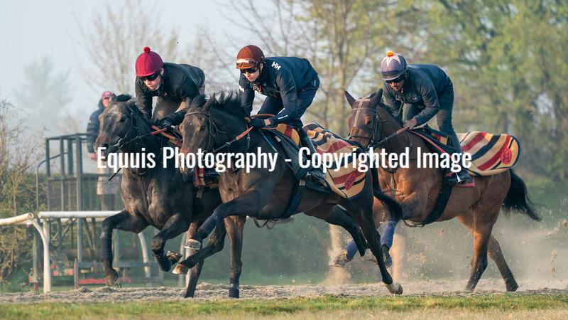 Gallops 21st April-4