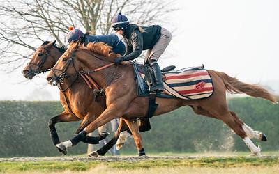 Gallops 21st April-12