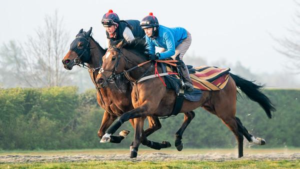 Gallops 21st April-23