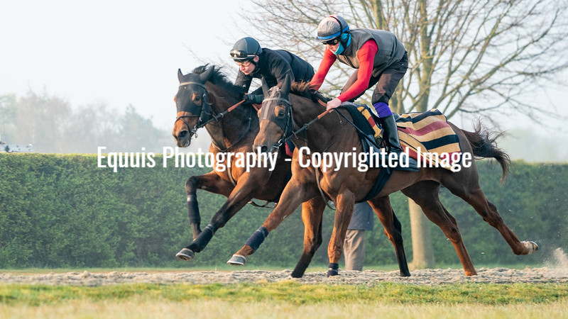 Gallops 21st April-17