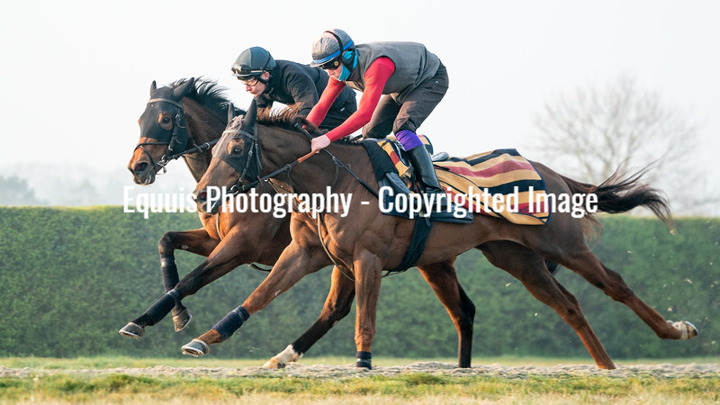 Gallops 21st April-19