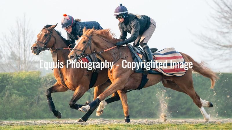 Gallops 21st April-10