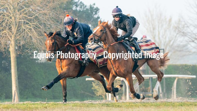 Gallops 21st April-7