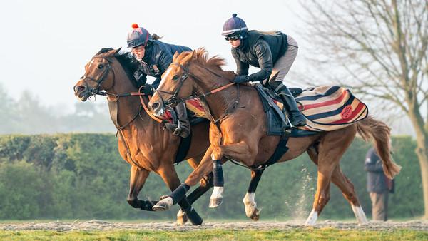 Gallops 21st April-9