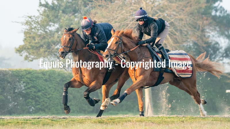 Gallops 21st April-8