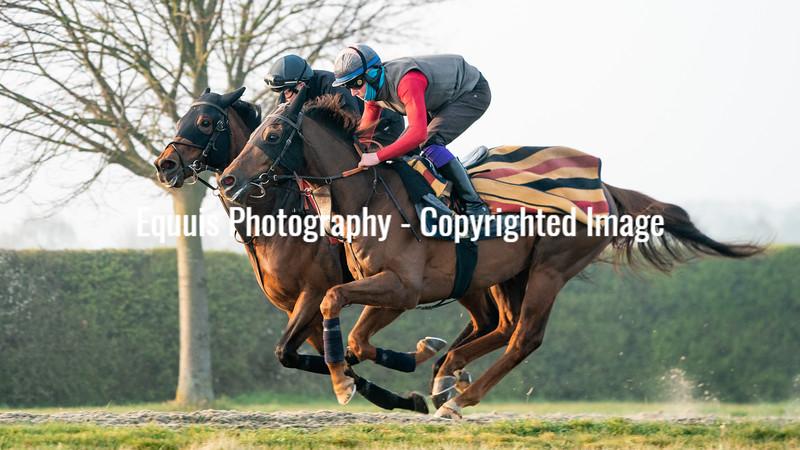 Gallops 21st April-20