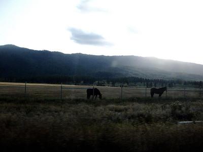 Views on highway 89.