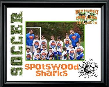 Spotswood Sharks-b