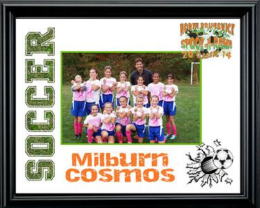 MilburnCosmos-b