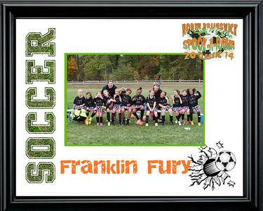 FranklinFury-b