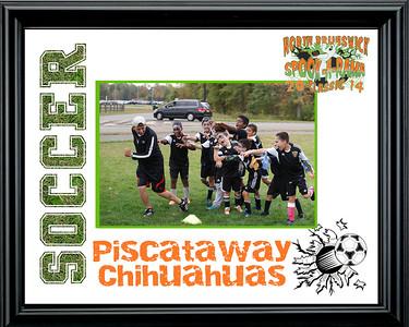 PiscatawayChihuahuas-a