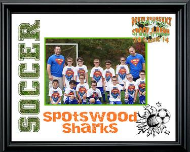 Spotswood Sharks-a