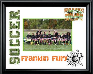 FranklinFury-a