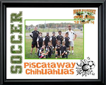 PiscatawayChihuahuas-b