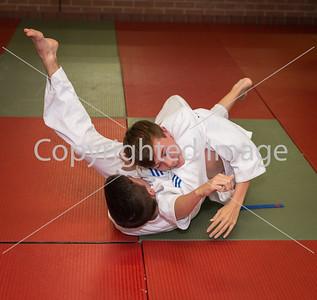 Jersey Judo Club