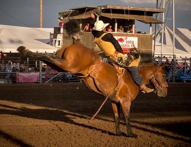 Bareback Bronco Rider