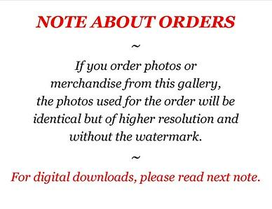 Smugmug Order Info