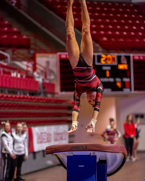 Ball State Cardinals Gymnastics Red vs White at Worthen Arena in Muncie, Indiana. Photo by Tony Vasquez.