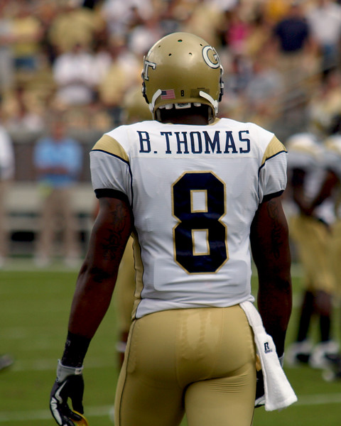 2009 Georgia Tech Football  (10-3, 7-1)