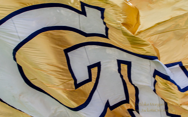2014 Georgia Tech Football (11-3, 6-2)