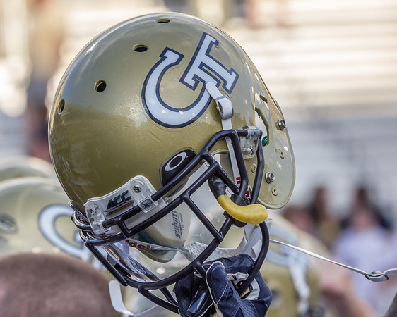 2015 Georgia Tech Football (3-9, 1-7)