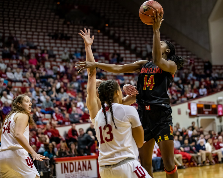 Indiana University falls to Maryland 79 to 69 at Assembly Hall. Photo by Tony Vasquez for Indy Sports Daily.